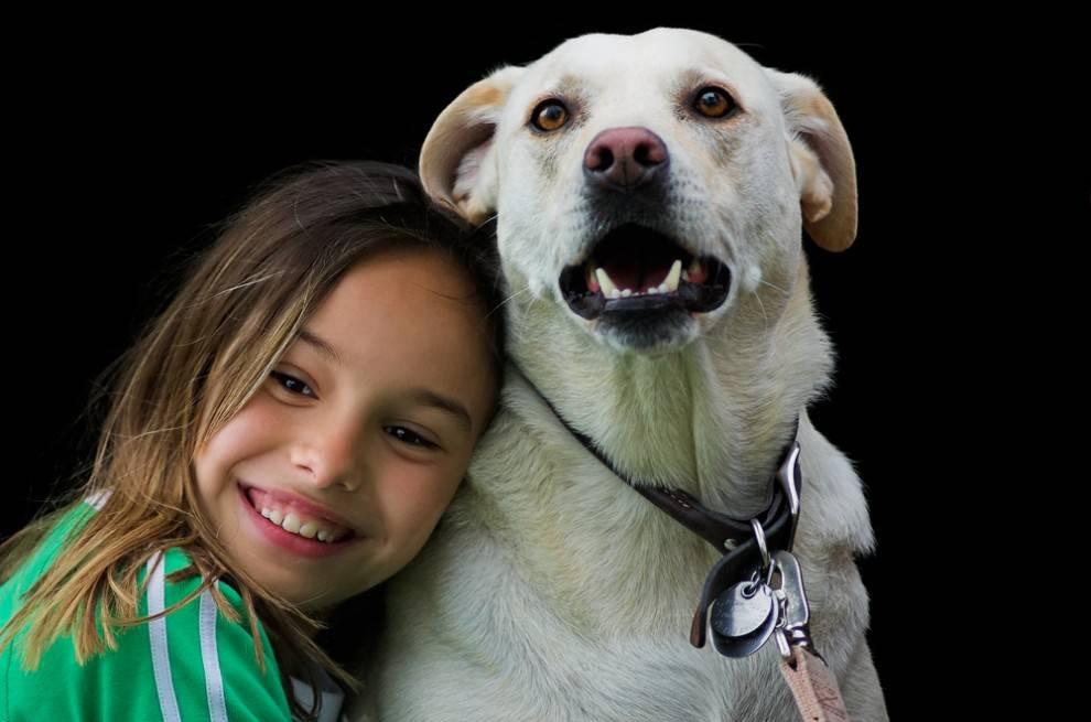 Dogilike.com :: รวมผลการวิจัยสุดอึ้ง ที่จะทำให้รู้ว่า บางทีน้องหมาก็สะอาดกว่าคน!!
