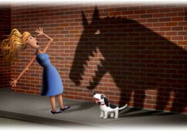 Dogilike.com :: Cynophobia โรคคนกลัวสุนัข ไม่ใช่เรื่องแปลก