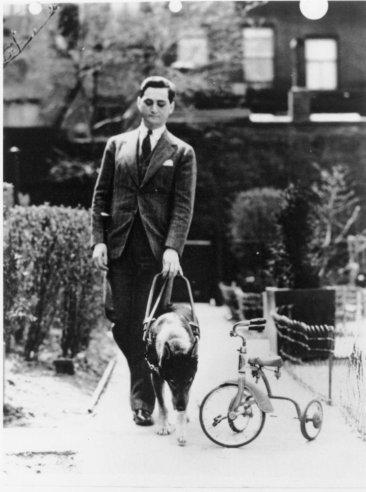 Dogilike.com :: ไล่เรียงไทม์ไลน์ของสุนัขนำทางจากอดีตจนถึงปัจจุบัน