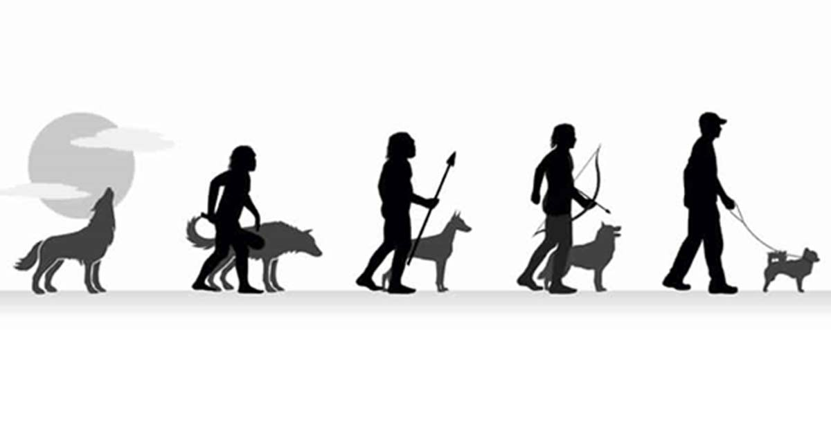 Dogilike.com :: ย่อเรื่องราวของสุนัขกับมนุษย์นาน 30,000 ปี ให้จบภายใน 5 นาที