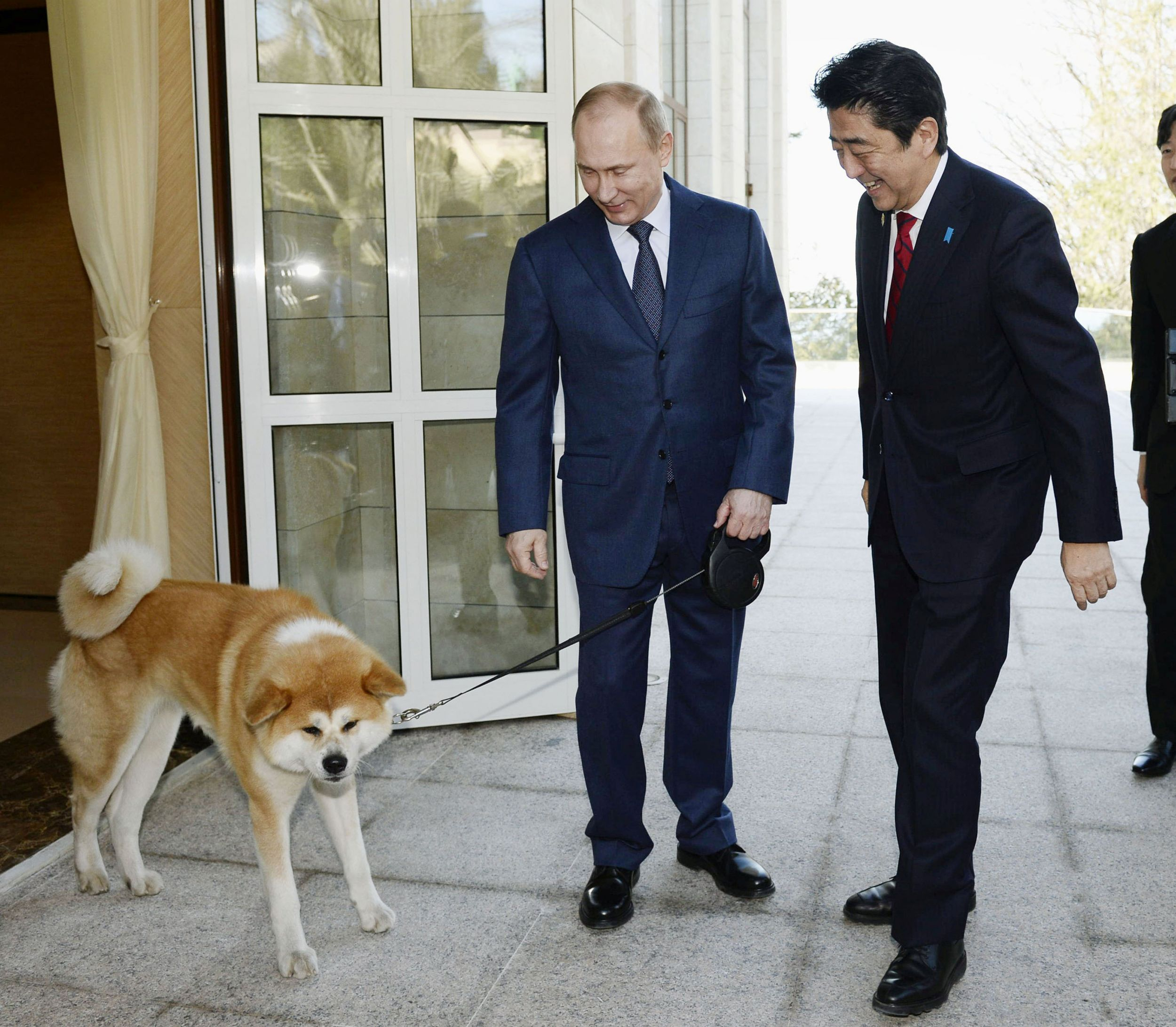 Dogilike.com :: แอบส่งเรื่องการฑูตกับน้องหมา ความสัมพันธ์ที่มีสุนัขเป็นตัวเชื่อม
