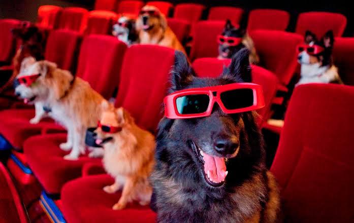 Dogilike.com :: ขำกันกรามค้าง! 10 ภาพยนตร์และการ์ตูนเกี่ยวกับน้องหมาน้องแมวสุดฮา