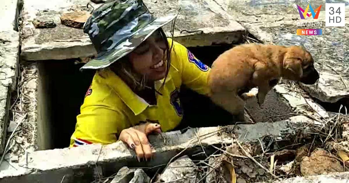 Dogilike.com :: นึกว่าผี ทีมกู้ภัยเร่งช่วยน้องหมาที่ติดอยู่ในท่อของสุสาน