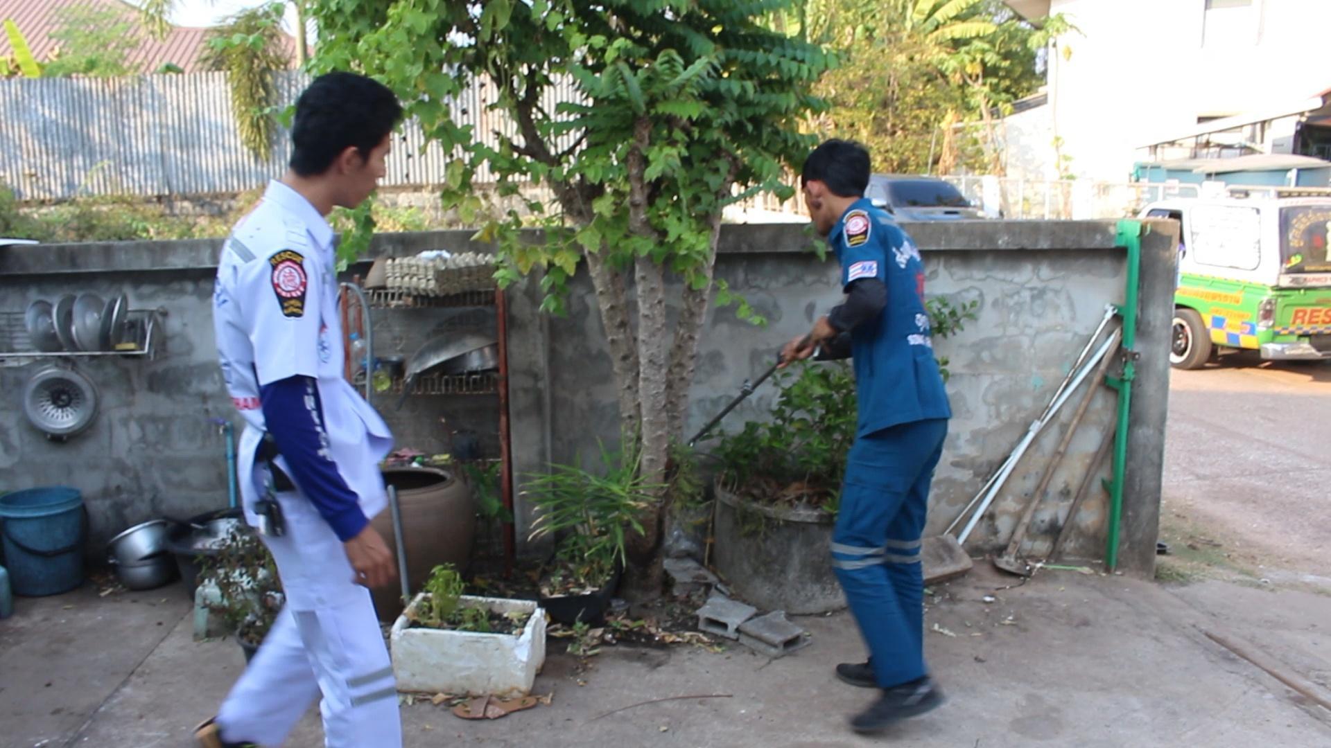 Dogilike.com :: สู้สุดใจ! �เจ้าเพชร� สุนัขไทยหลังอานปกป้องเจ้านายจากงูเห่าเข้าบ้าน