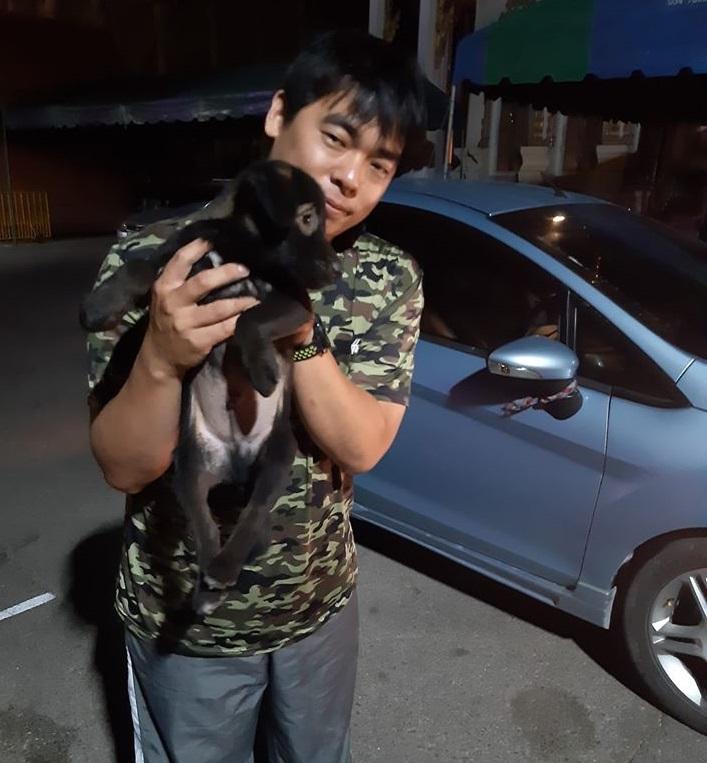 Dogilike.com :: แปลกตา! น้องหมาหาบ้านมีขนสีน้ำตาลรอบดวงตาคล้ายใส่แว่น