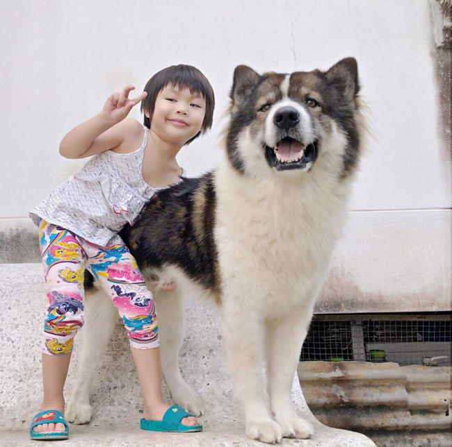 Dogilike.com :: ทนเพราะรัก! หญิงสาวเปลี่ยนน้องหมาอารมณ์ร้อนให้กลับมาใจดีอีกครั้ง