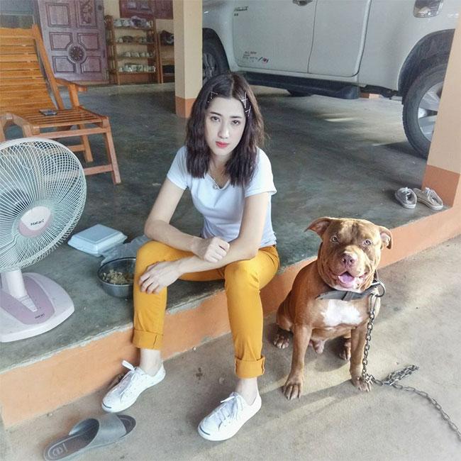 Dogilike.com :: เจ้าหมานักคาบ! ชอบสรรหาของมาเซอร์ไพรส์แม่ทุกวัน