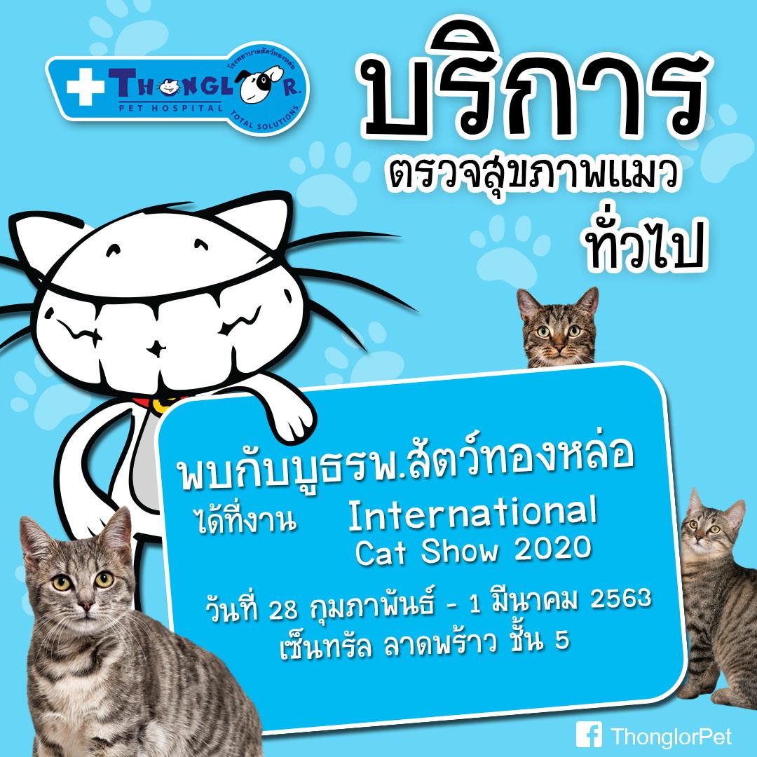 Dogilike.com :: �รพส.ทองหล่อ� ชวนทาสแมว ร่วมกิจกรรมพิเศษในงาน International Cat Show 2020