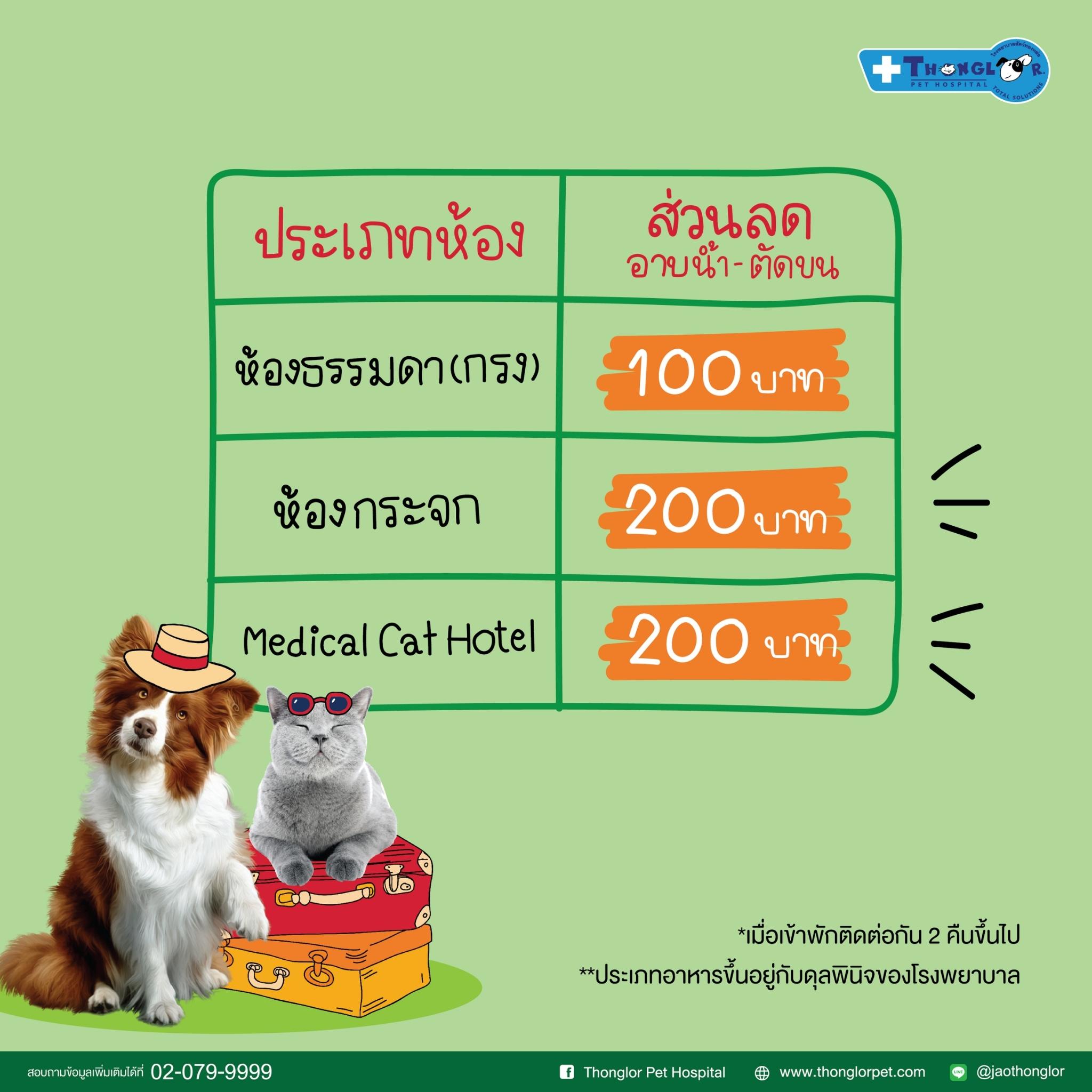 Dogilike.com :: รพส.ทองหล่อ ให้บริการรับฝากสุนัข-แมว ตอบรับปลดล็อค COVID-19