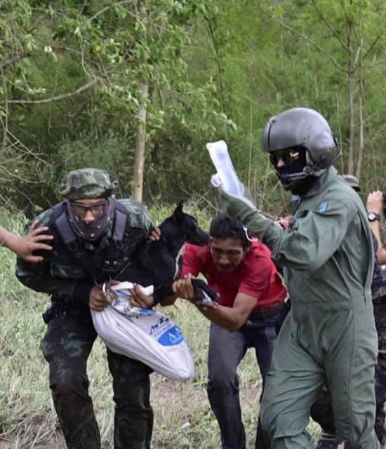 Dogilike.com :: นาทีชีวิต ทหารช่วยเหลือ 4 ชาวบ้านและ 3 สุนัข หลงป่าทุ่งแสลงหลวง