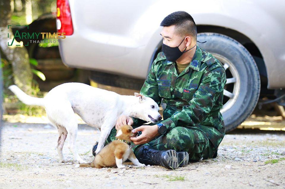 Dogilike.com :: เผยเรื่องราวอบอุ่น เจ้าตัวเล็กลูกหมาอาภัพที่ได้รับการช่วยเหลือจากทหารชายแดนใต้