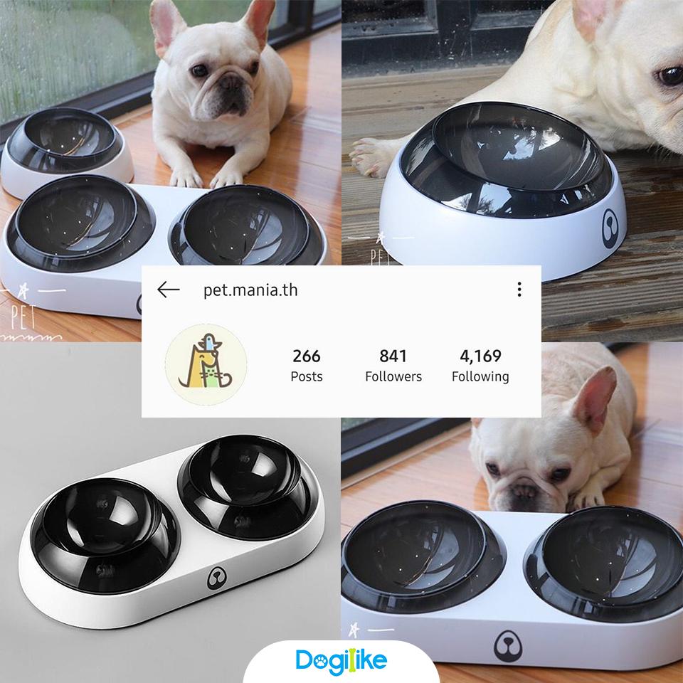 Dogilike.com :: Review 10 ชามน้ำ - อาหาร สารพัดประโยชน์จากร้านใน Instagram