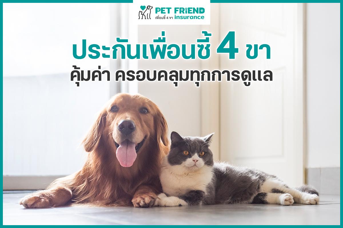 Dogilike.com :: มอบสุขภาพดีให้สุนัขด้วย ประกันเพื่อนซี้4ขา ครอบคลุมทุกการดูแล