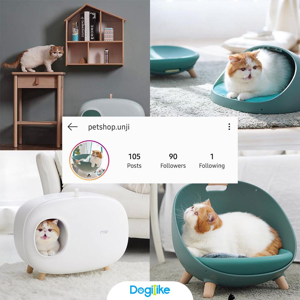 Dogilike.com :: Review 10 ร้านเฟอร์นิเจอร์หมาแมว น่ารักตกแต่งบ้านได้จาก Instagram