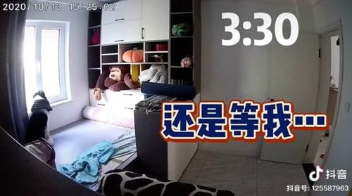 Dogilike.com :: ใจละลาย! สาวเปิดกล้องวงจรปิดดู เห็นเจ้าตูบทำแบบนี้ตอนไม่อยู่บ้าน