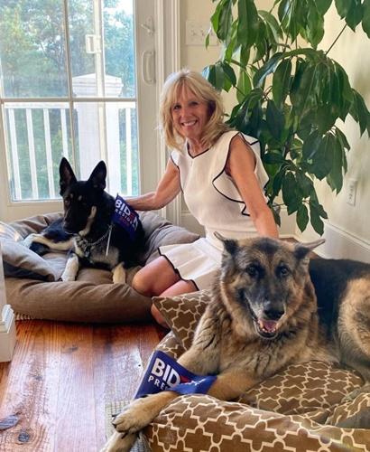 Dogilike.com :: เผยโฉม 2 เจ้าตูบที่จะเข้าไปอยู่ในทำเนียบขาวกับ โจ ไบเดน