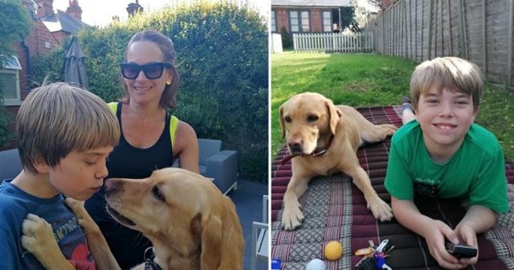 Dogilike.com :: เรื่องราวน่ารัก เจ้า Ollie พี่ชายสี่ขาของเด็กชายออทิสติก!