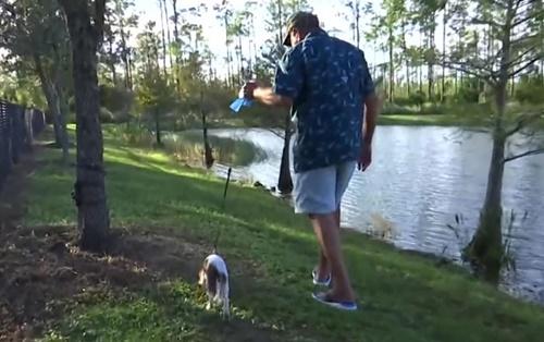 Dogilike.com :: เผยคลิปคุณปู่วัย 74 ปีต่อสู้กับจระเข้ ช่วยชีวิตลูกสุนัขสุดรัก!