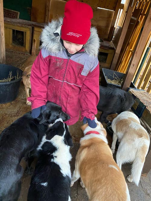 Dogilike.com :: จิ๋วแต่แจ๋ว! หนูน้อย 10 ขวบผู้เปลี่ยนโลกของหมาแมวไร้บ้าน