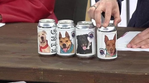 Dogilike.com :: เจ๋ง! เบียร์มะกันติดฉลากช่วยตูบหาบ้าน นำเงินสร้างศูนย์พักพิงฯ