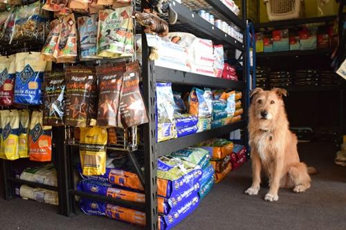 Dogilike.com :: เช็กลิสต์! เก็บอาหารหมาแมวยังไงให้อยู่ได้นานๆ