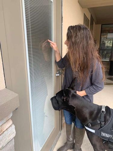 Dogilike.com :: น่ารัก! สุนัขบำบัดให้กำลังใจผู้สูงอายุช่วงวิกฤติโควิด-19 แบบนี้