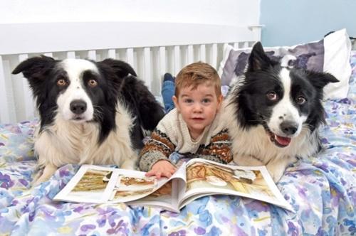 Dogilike.com :: เรื่องราวน่ารัก! หนูน้อย 2 ขวบมีตูบเป็นคู่หูตัวติดกันยิ่งกว่าพี่น้องแท้ๆ