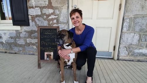 Dogilike.com :: เจ๋ง! ร้านไวน์ให้น้องหมาส่งไวน์ถึงรถลูกค้าช่วงวิกฤติโควิด-19