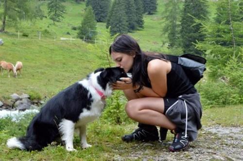 Dogilike.com :: คิดถึงมาก! ตูบดีใจได้พบหน้าหญิงสาวหลังกักตัวนาน 50 วัน(มีคลิป)