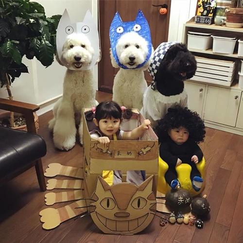 Dogilike.com :: คุณยายญี่ปุ่นเผยความน่ารักของ 2หนูน้อยกับ 3พี่เลี้ยงสี่ขา!