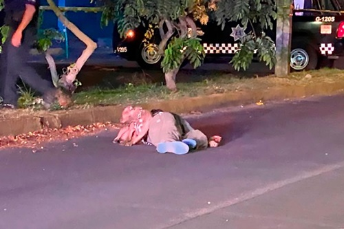 Dogilike.com :: เจ้าตูบซื่อสัตย์นั่งเฝ้าเจ้าของถูกยิงกลางถนนที่ประเทศเม็กซิโก!