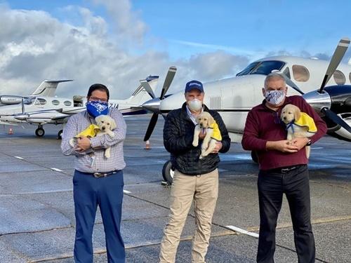 Dogilike.com :: ฝ่าโควิด-19! นักบินอาสาพาสุนัขช่วยเหลือฝึกหัดบินไปส่งทั่วสหรัฐฯ