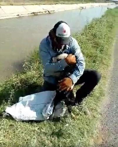 Dogilike.com :: หนุ่มเม็กซิกันช่วยสุนัขลอยคออยู่ในน้ำ เจ้าตูบดีใจทำแบบนี้! (คลิป)