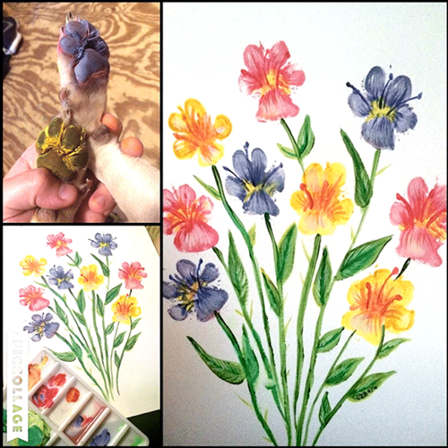 Dogilike.com :: ไอเดียเก๋! เจ้าของพากันวาดภาพดอกไม้น่ารักจากรอยอุ้งเท้าเจ้าตูบ