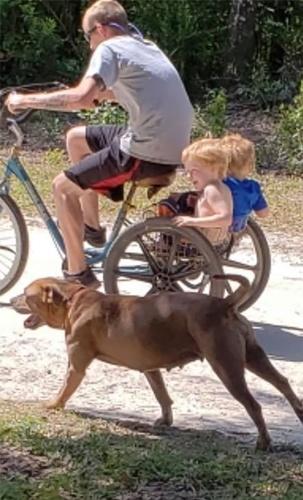Dogilike.com :: เด็กชายออทิสติกหายออกจากบ้าน พบ 2 ตูบคอยดูแลไม่ห่าง!