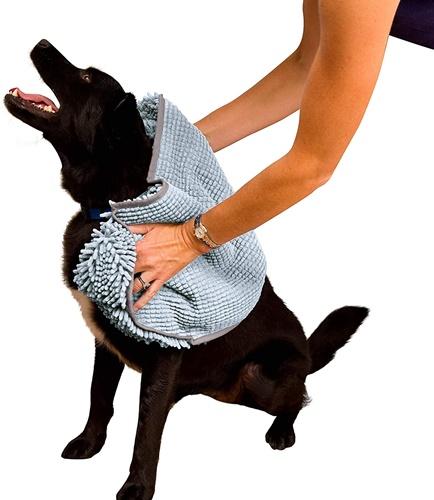 Dogilike.com :: ฝนตกแล้วไง! ส่องไอเทมเด็ด ช่วยเจ้าตูบตัวแห้งสะอาดในหน้าฝน
