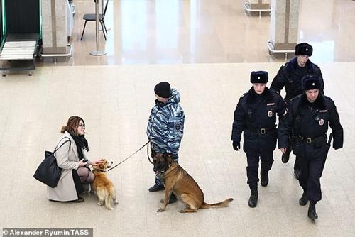Dogilike.com :: เกษียณแล้ว! เจ้า Ryzhiy คอร์กี้ K-9 เพียงตัวเดียวของกรมตำรวจรัสเซีย