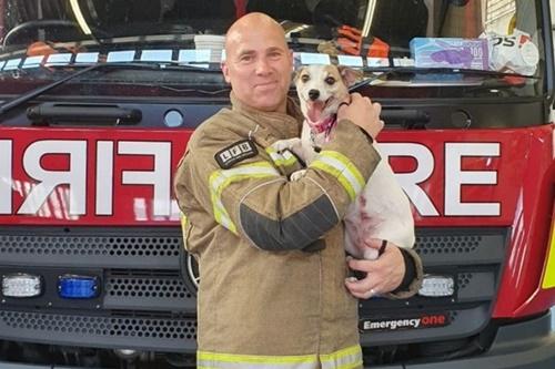 Dogilike.com :: น่ารัก! หนุ่มดับเพลิงอาสาเลี้ยงตูบให้เจ้าของที่บาดเจ็บเหตุบ้านไฟไหม้