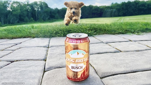 Dogilike.com :: มะกันเปิดตัว เบียร์สำหรับสุนัข เอาใจเจ้าของที่อยากมีเพื่อนดื่ม!