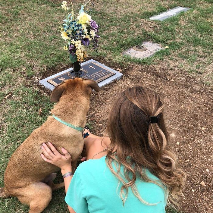 Dogilike.com :: เรื่องราวสุดซึ้ง! เมื่อสุนัขคือกำลังใจในวันที่มะเร็งคร่าชีวิตพี่สาว