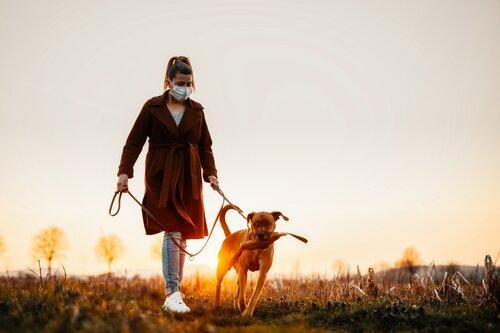 Dogilike.com :: รู้หรือไม่ ... สุนัขเดินทางและขับถ่ายโดยใช้สนามแม่เหล็กโลก ?