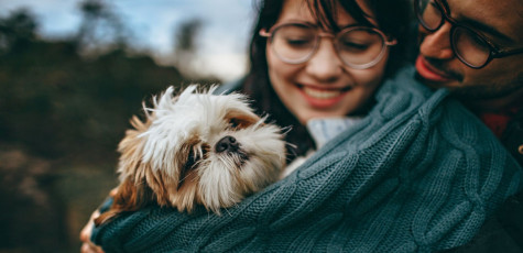 Dogilike.com :: 7 วิธีเอาตัวรอดจากโรค COVID-19 ของคนและสุนัข