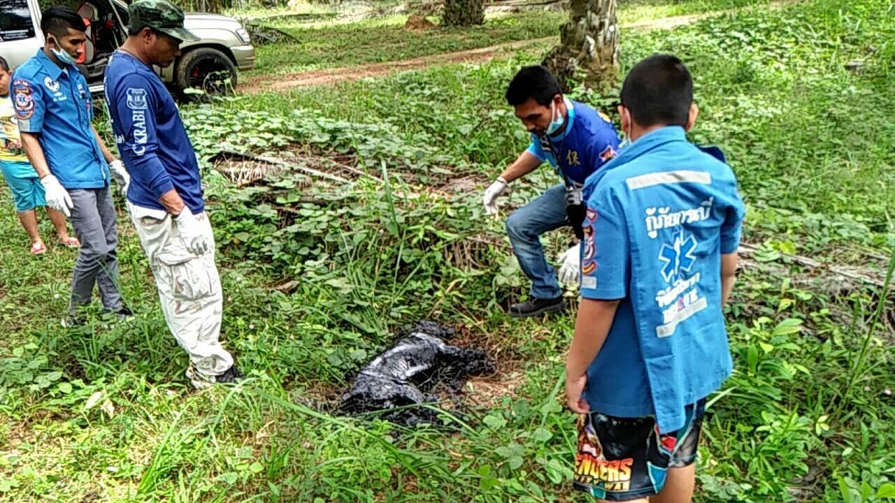 Dogilike.com :: เกือบไม่รอด!! เจ้าหน้าที่กู้ภัยช่วยเหลือสุนัขติดยางมะตอย