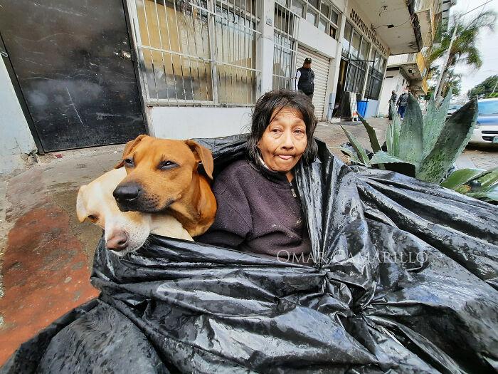 Dogilike.com :: หญิงไร้บ้านใช้ชีวิตในถุงขยะกับ 6 สุนัข เหตุศูนย์พักพิงไม่ให้เลี้ยงสัตว์!