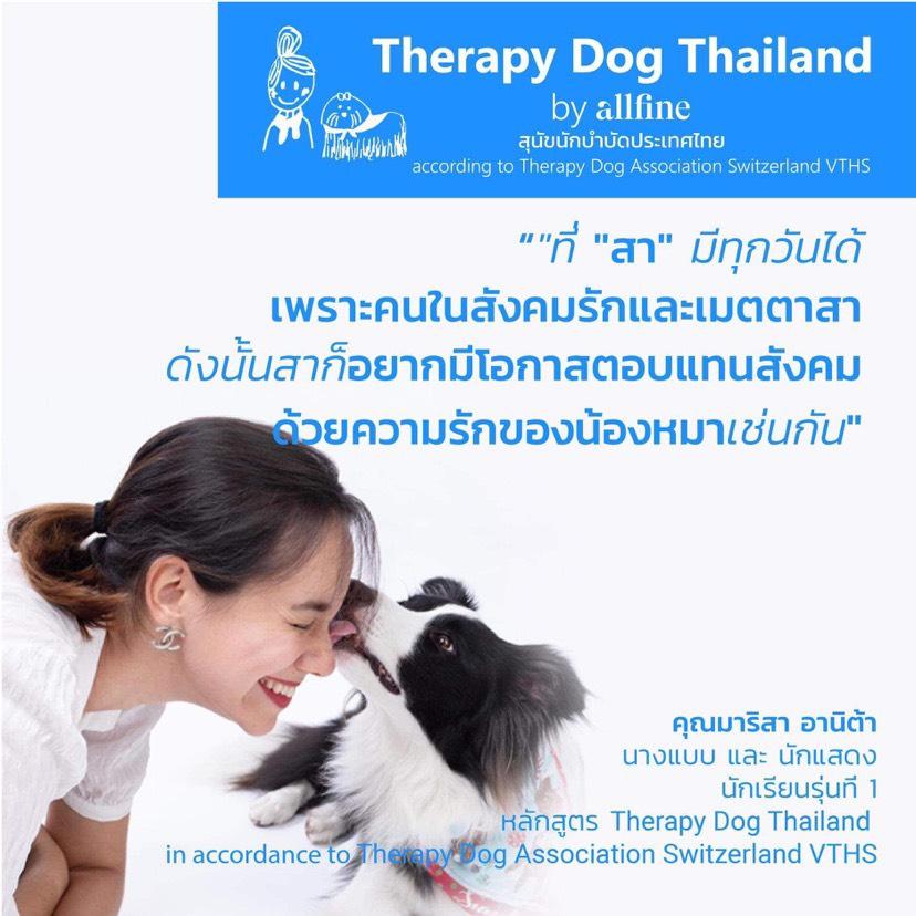 Dogilike.com :: ครั้งแรกในไทย กับการฝึกน้องหมานักบำบัดมาตรฐานระดับโลก!!