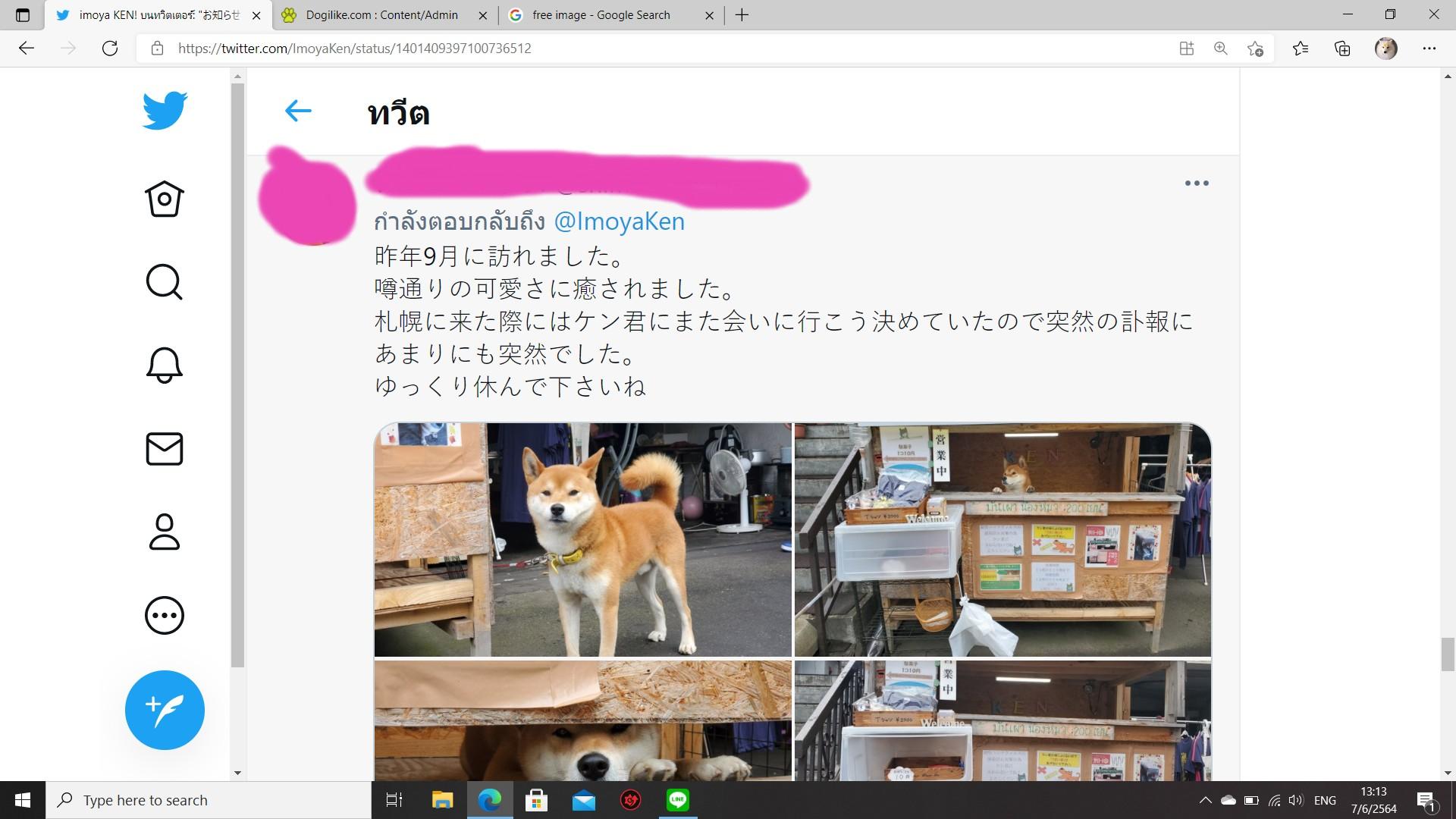 Dogilike.com :: �ش����� ह�ا ��ͧ��ҪԺТ���ѹ�Ҫ��ʹѧ���ª��Ե