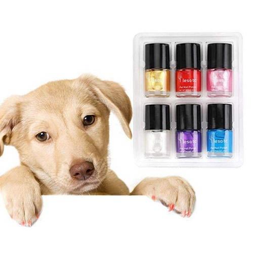 Dogilike.com :: รู้แล้วต้องเลิก! น้ำยาทาเล็บสีสวยแต่เป็นอันตรายกับสุนัข