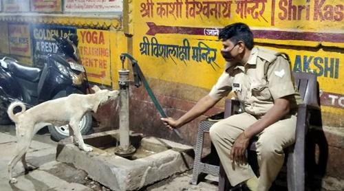 Dogilike.com :: ไวรัลน่ารัก ภาพพี่ตำรวจอินเดียให้น้ำน้องหมาจรฯ!