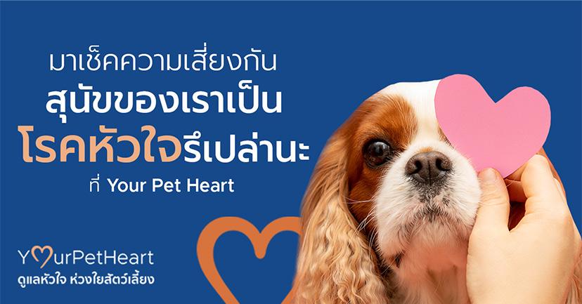 "Ѕ""а™з§§«""Ѕа'и¬І°—є Ўє—¢¢ЌІа√""аїзєв√§Ћ—«г®Ћ√""Ќаї≈и""є– Ј'и Your Pet Heart"