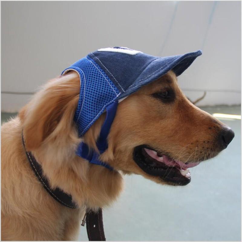 Dogilike.com :: 6 ไอเทมช่วยน้องหมาคลายร้อนจาก Shopee